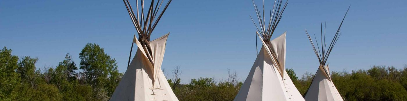 Three teepees on a grassy plain
