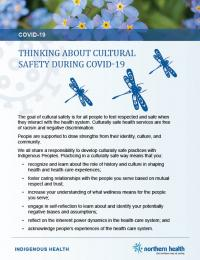 "Cover of fact sheet with dragon flies and text that reads ""thinking about cultural safety during covid-19"""